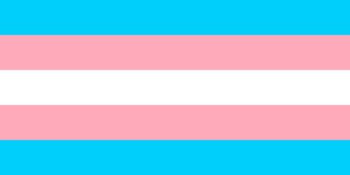 2500px-transgender_pride_flag
